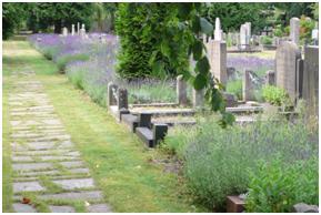 Commotie rond crematorium Hilversum