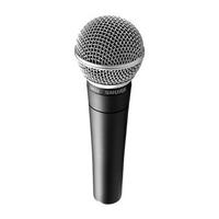 mic (Kopie)