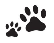 dier voetafdruk