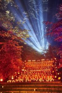2 november: samen herdenken in Gedenkpark Westerveld