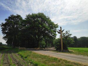 Natuurbegraafplaats Heidepol gaat fiks uitbreiden